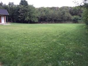 Große Lager_Spielwiese mit Blick zum Lärmschutzdamm