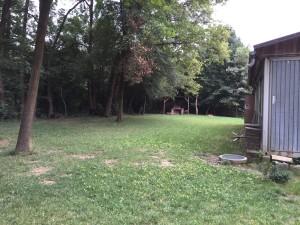 Kleine Wiese hinter den Kontainern mit Blick zum Lärmschutzdamm
